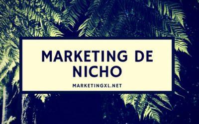 ¿Qué es el Marketing con nichos?