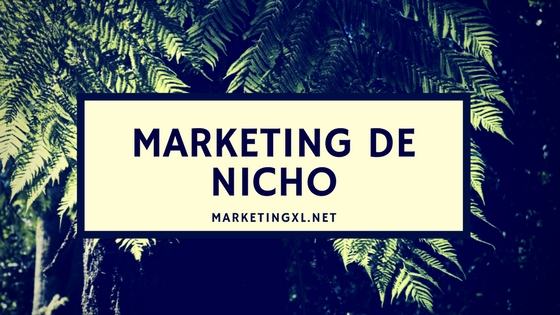 Marketing de nicho, marketing eficiente