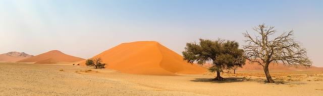tienda web en el desierto